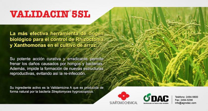 DAC - DISTRIBUIDORA AGROCOMERCIAL, S.A.. AGROQUIMICOS ...